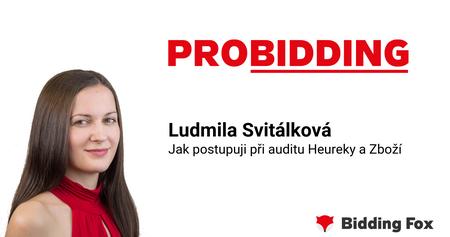 PROBIDDING 2019 - záznam prednášky Lídy Svitálkové