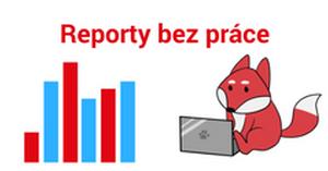 Bidding report - vyskúšajte novú funkciu v aplikácii Bidding Fox!